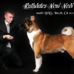 Ruthdales Veni Vidi Vici
